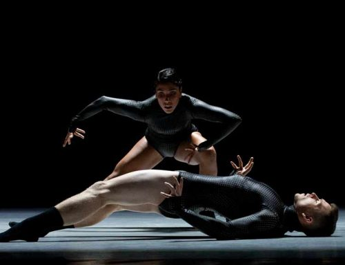 El Festival de Danza se apodera de Madrid en diciembre | Noticias de Danza